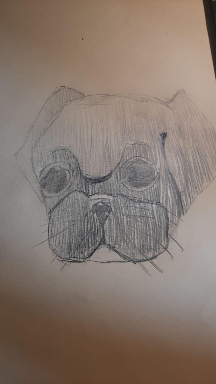 Coletti_disegni_5